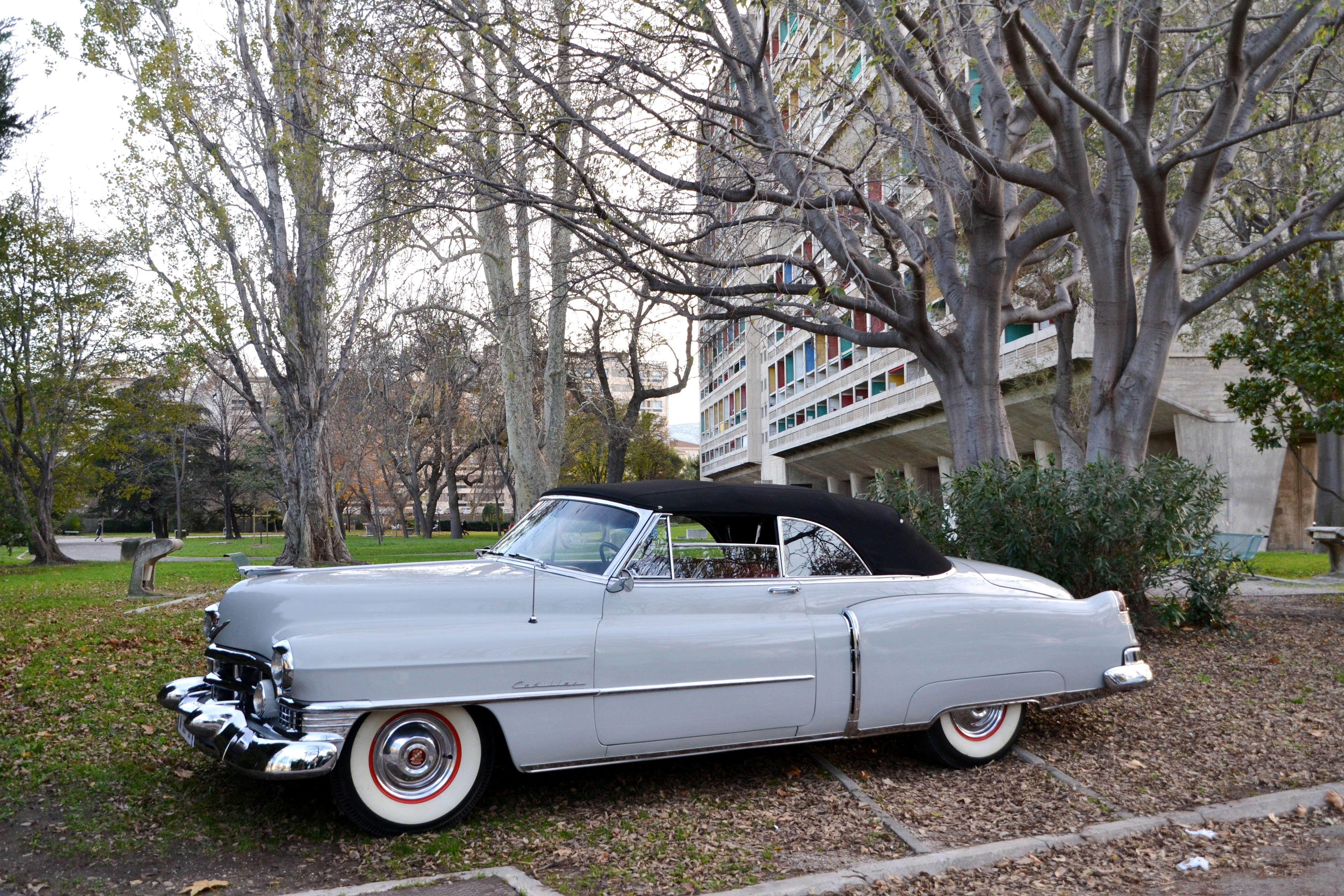 1951 Cadillac Series 62 Voiture De Collection Vendre Convertible
