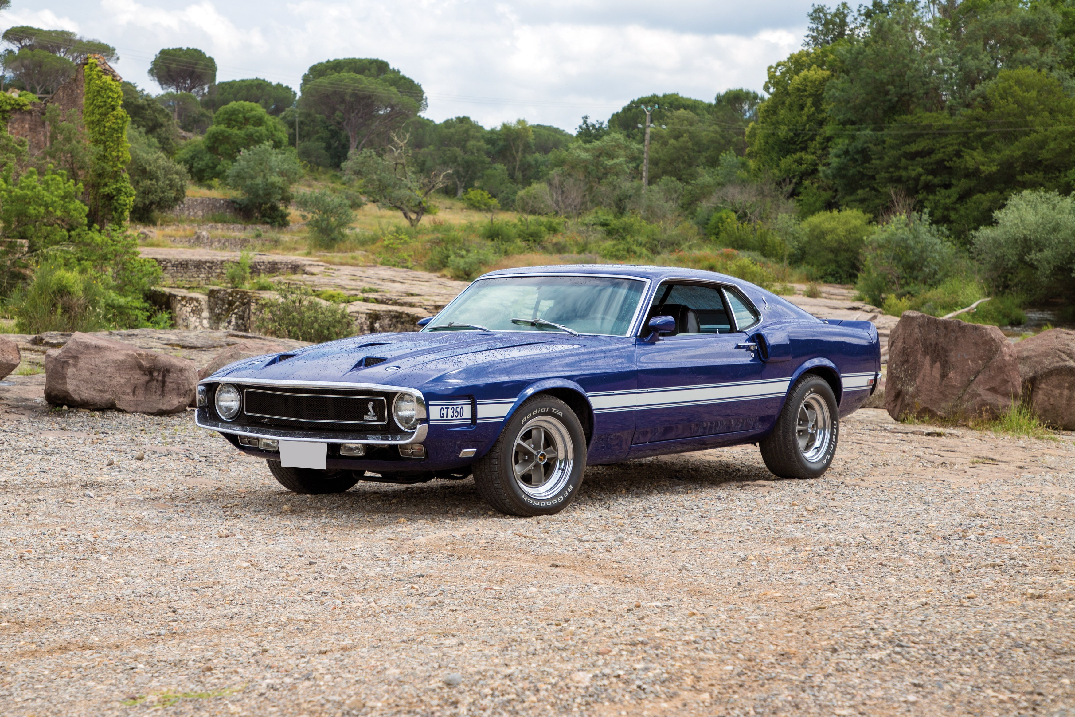1969 ford mustang shelby gt350 cobra classic driver market