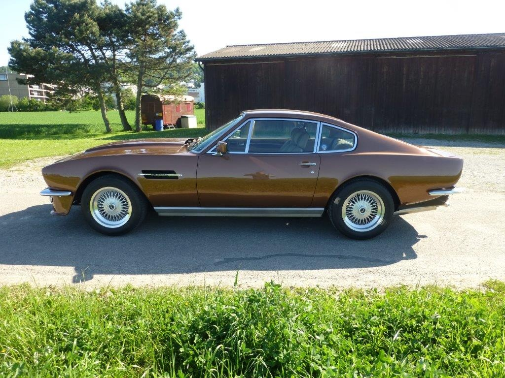1981 Aston Martin V8 Oldtimer Zu Verkaufen