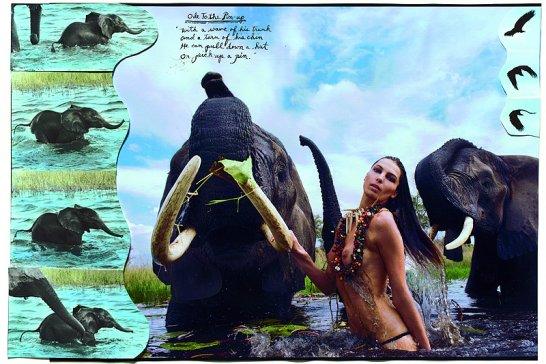 """Pirelli Kalender """"The Cal 2009"""": Peter Beard und sieben Schönheiten"""