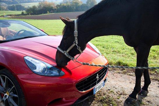 Ferrari California: Zur Sonne, zur Freiheit