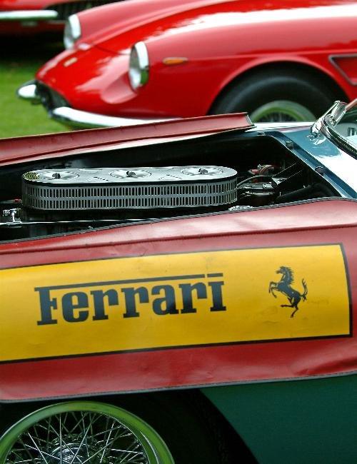 Concorso Italiano 2005 - Best of Show