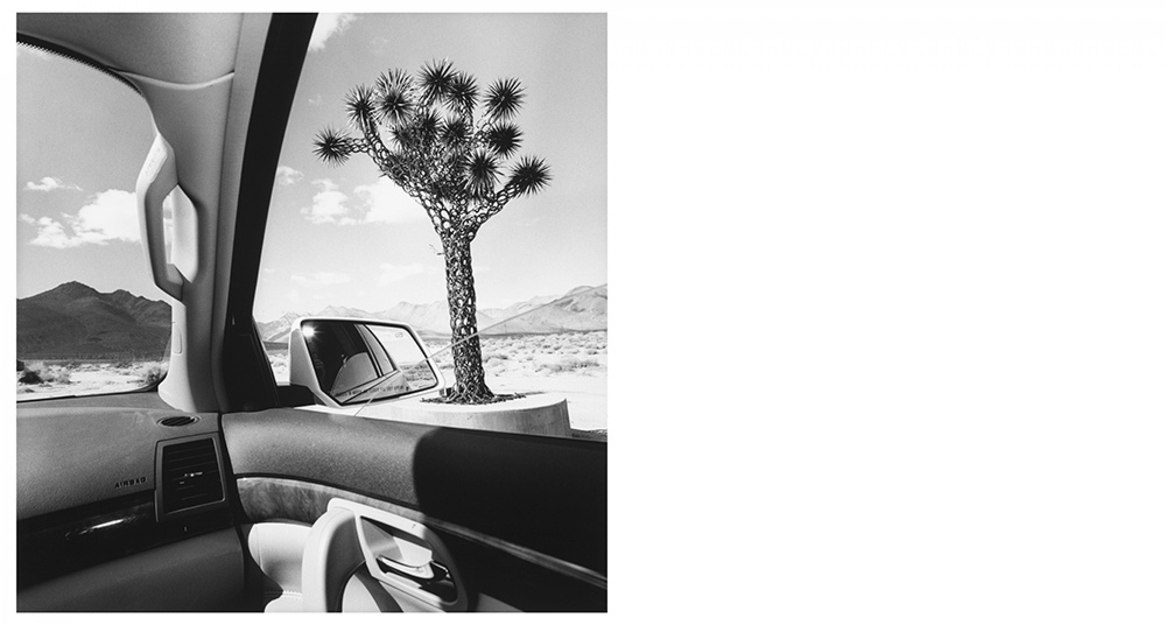 Lee Friedlander, California, 2008 From America by Car series Gelatin silver print, 37.5 × 37.5 cm Courtesy Fraenkel Gallery, San Francisco © Lee Friedlander, courtesy Fraenkel Gallery, San Francisco