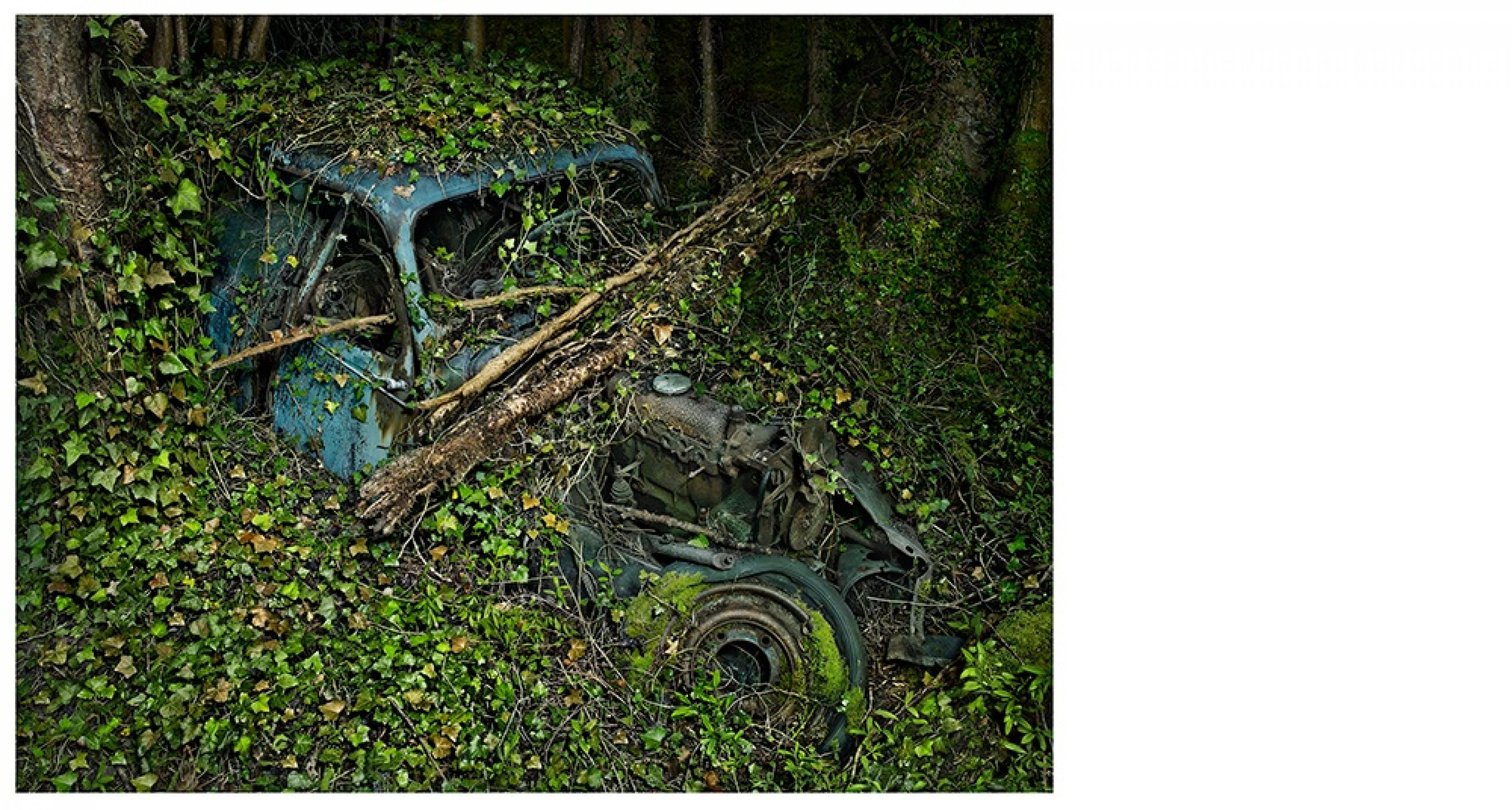 Peter Lippmann, Citroën Traction 7, 2012 From Paradise Parking series C-print, 75 × 100 cm Collection of the artist © Peter Lippmann