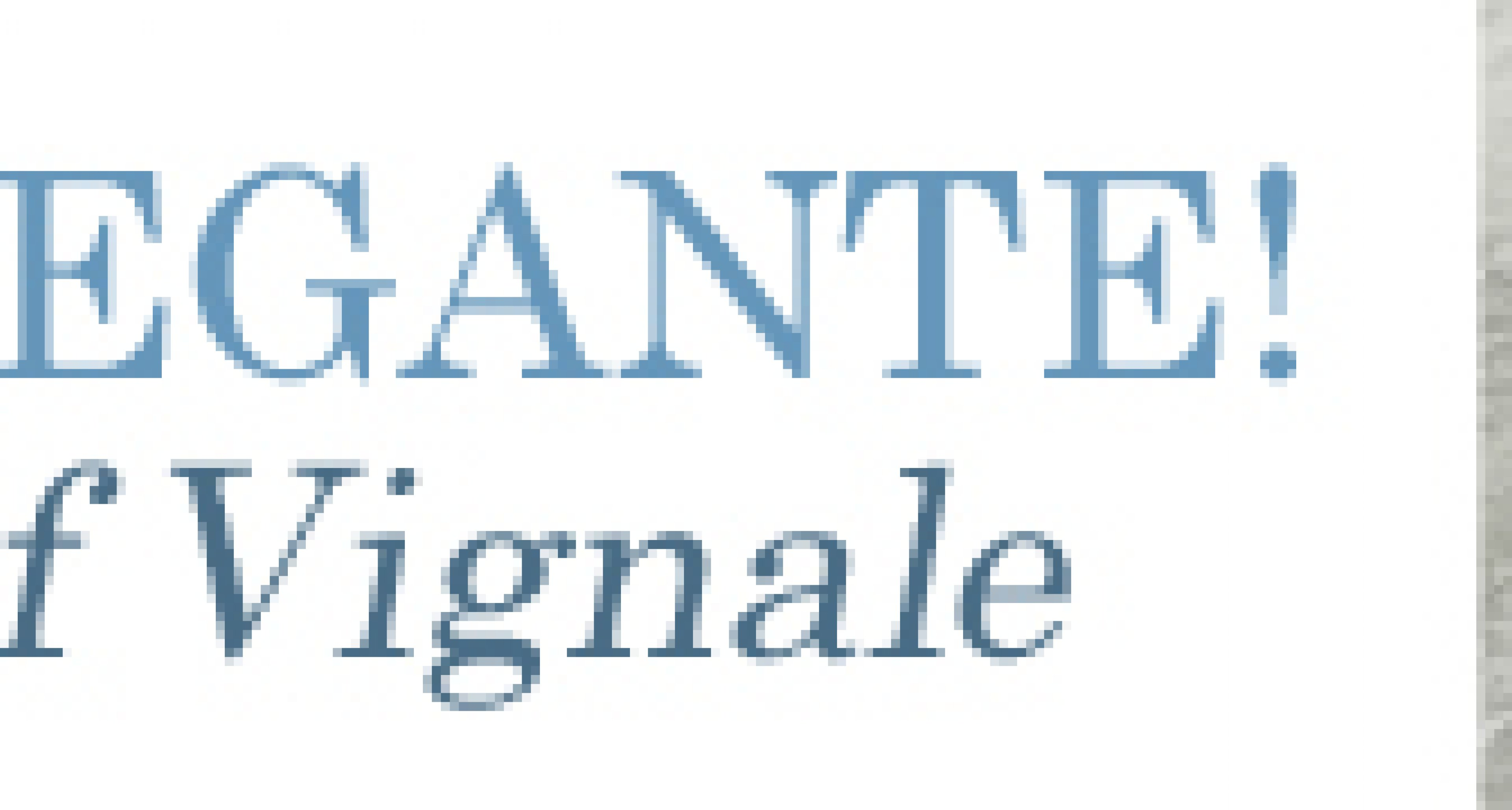 Molto Elegante: The Design of Vignale