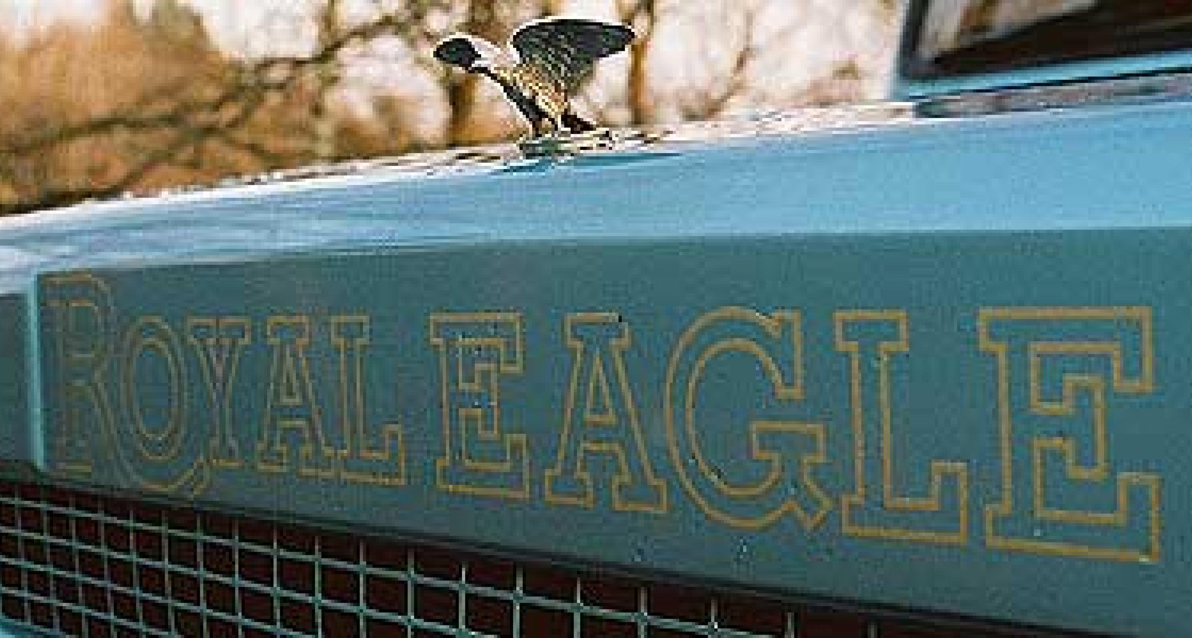 Royal Eagle: Bigger is better