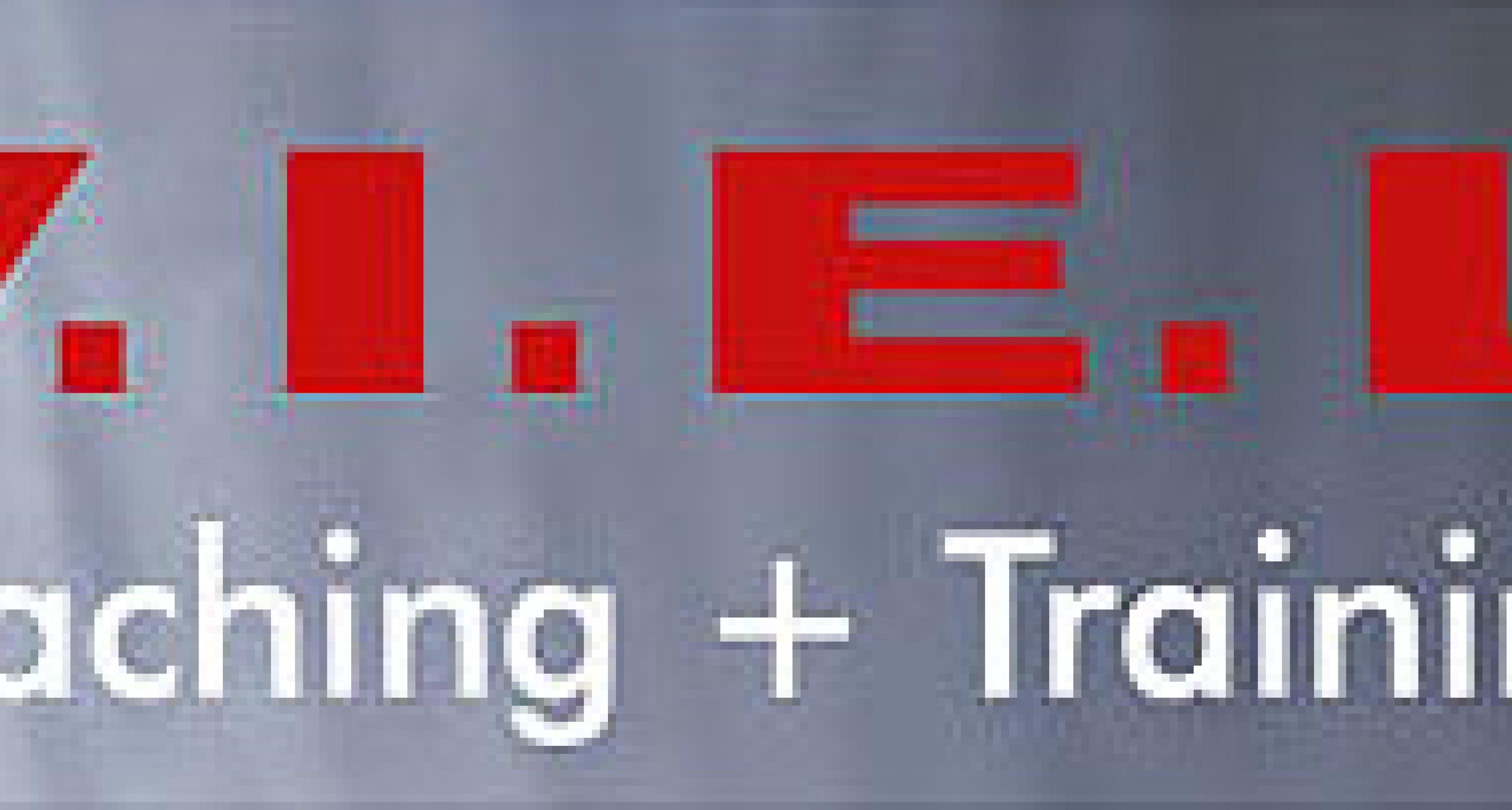 V.I.E.L: Coaching und Training