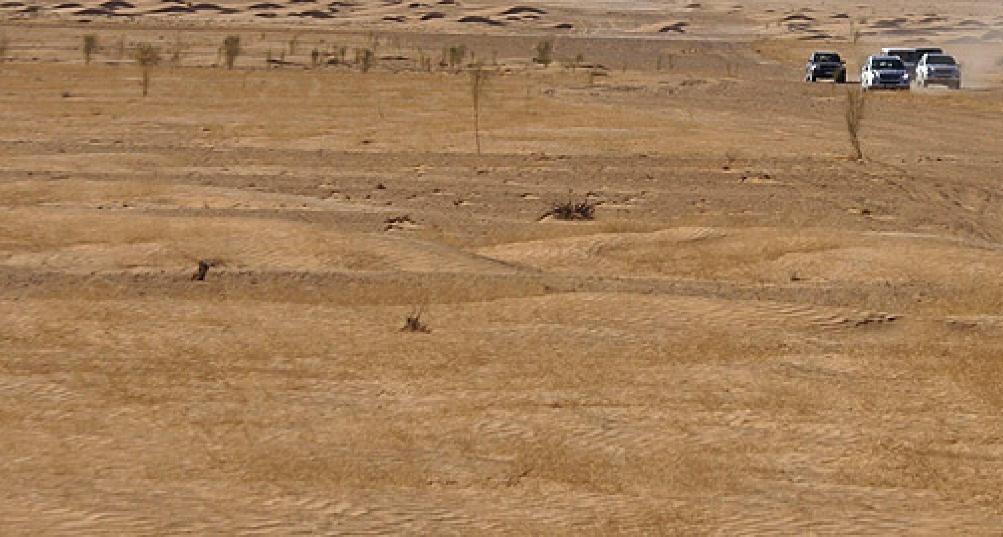 Wüste Geschichte – Teil 1