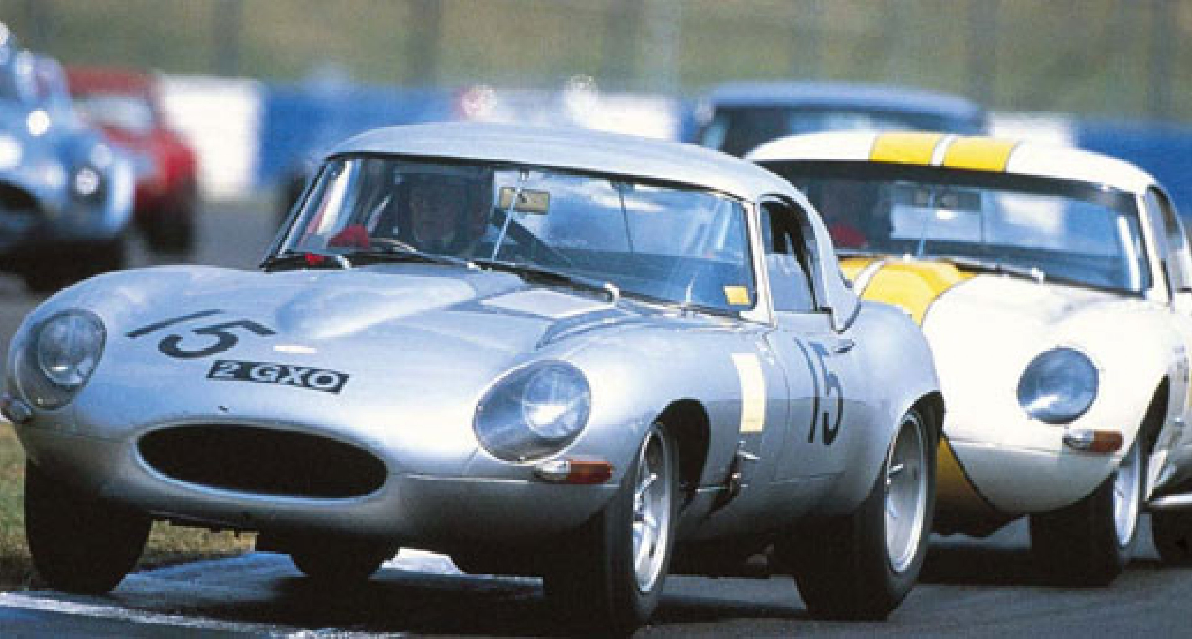 Brands Hatch Classic Festival, 22 – 23 May 2004